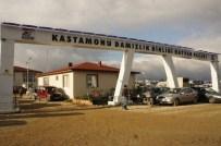Kastamonu'da Hayvan Pazarı, Şap Hastalığı Nedeniyle Kapatıldı