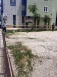 Polisin Patlattığı Şüpheli Paketten 'Pasta' Çıktı