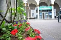 CAMİ BAHÇESİ - Bozüyük'te Camiler Çiçek Açtı