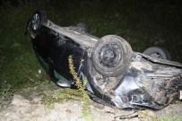 KOZCAĞıZ - Otomobil Başıboş Eşeklere Çarptı Açıklaması 1 Yaralı