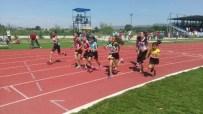 MUSTAFA NECATİ - Aydın Türkiye Atletizm Şampiyonasına Ev Sahipliği Yaptı
