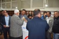 KANDIL GECESI - Van Gıda Tarım Ve Hayvancılık İl Müdürlüğü'nden Süt Dağıtımı