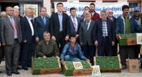 KISECIK - Büyükşehir Belediyesi Çiftçiye 150 Bin Domates Fidesi Dağıttı