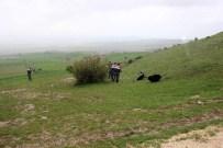 Kastamonu'da Hayvan Otlatma Kavgası Açıklaması 1 Ölü, 2 Yaralı