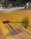 KOZCAĞıZ - Ağaçları Sökenler Önce MOBESE Kamerasına, Sonra Jandarmaya Yakalandı