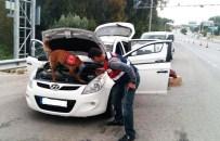 NARKOTİK KÖPEK - Narkotik Köpek 'Alçı'dan Kaçış Yok
