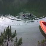 Deniz Bisikletinden Göle Düşerek Boğuldu