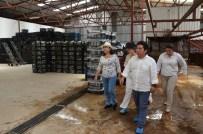 EKVATOR - Ekvatorlu Milletvekilleri Alanya Muzunu İncelediler