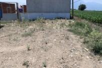 KARAAĞAÇLı - Karaağaçlı'ya İçme Suyu Arıtma Tesisi