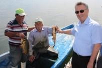 AYNALı SAZAN - Manisa'da Su Ürünleri Denetimleri 5 Tekneyle Devam Ediyor