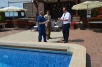 KOLERA - Bursa'da Havuzlar Mercek Altında