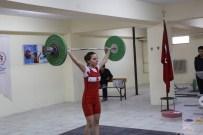 Minikler Türkiye Halter Şampiyonası Burhaniye'de Yapılacak