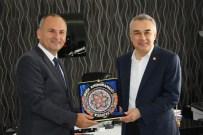 CENK ÜNLÜ - AK Parti MKYK Üyesi Mustafa Savaş, Didim'de İncelemelerde Bulundu