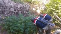 Diyarbakır'da Uyuşturucu Tacirlerine Darbe