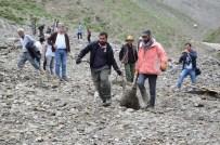 SEL AFETI - Sel sularına kapılan 800 hayvan telef oldu