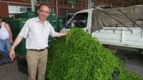 BARAJ KAPAKLARI - Çarşamba Ovası'nda Ürünlerin Yüzde 60'I Çürüdü