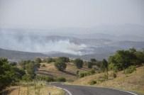 Uşak'ta Buğday Tarlası Ve Makilik Alanda Yangın
