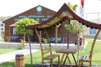 Belediyenin Kamelyaları İlçeyi Süslüyor