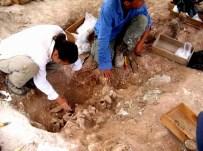 GEYRE - Aydın'da Yerin Altından Tarih Fışkırıyor