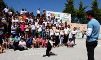 SOKAK KÖPEĞİ - Çankaya Belediyesi'nden Çocuklara 'Sokak Hayvanları' Dersi