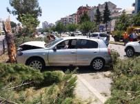 HıZıR - Otomobil Ağaca Çarptı Açıklaması 2 Yaralı