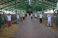 KOMPOZISYON - Tarım Kampı'na 30 Öğrenci Katıldı
