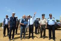 SİGARA İZMARİTİ - Edirne'de Yanan Ormanlık Alanlar Ağaçlandırılacak