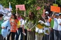 MESUT YILMAZ - Bafra'da Çevre Günü Etkinliği