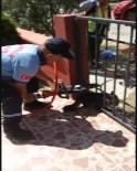 Kapıya Sıkışan Kediyi İtfaiye Kurtardı