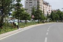 Seydişehir'de Park Ve Bahçelere Düzenleme