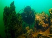 İNCİ KEFALİ - Dünyanın Bilinen En Büyük Mikrobiyalitleri Van Gölü'nde