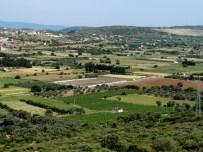 ÇEŞMELI - Çeşme Tarımsal Kalkınma Kooperatifi Kuruluyor