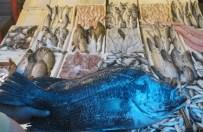 BALIK SEZONU - Ramazan'da Balık Ucuzladı