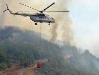 SİGARA İZMARİTİ - Orman yangınlarında 'terör izi' yok