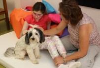 OTISTIK - Engelli Çocuklara Köpekle Terapi