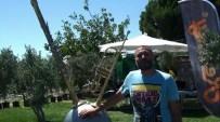 HÜSNÜ ŞENLENDİRİCİ - Hüsnü Şenlendirici klarnet kampı açtı