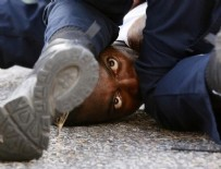 MISSISSIPPI - ABD'de siyahilere göç çağrısı