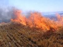 MURAT TÜRKMEN - Çiftçilere  Anız Yangını Uyarısı