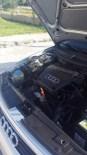 Otomobilin Motor Kısmından Çıkan Yaklaşık 3 Metrelik Yılana Sakinleştirici İğne