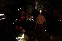 PıNARDERE - Aydın'da Trafik Kazası Açıklaması 2 Ölü