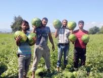 AHMET DURSUN - Bafra Karpuzu Yok Satıyor