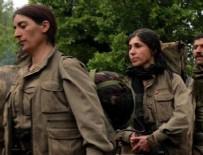 CEMIL BAYıK - PKK Türkiye'den kaçıyor