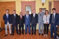 BEKIR YıLDıZ - Sivas Tarım Fuarı Tertip Komitesi Vali Gül'ü Ziyaret Etti