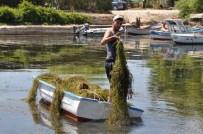 Yeşilada Balıkçı Barınağı Temizlendi
