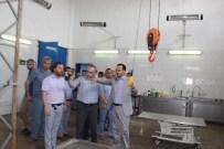 ADÜ Rektörü Bircan'dan Hayvan Hastanesindeki Canlara Ziyaret
