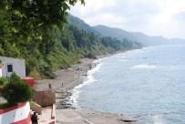 Alaplı'da Plaj Temiz Çıktı