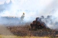 SİGARA İZMARİTİ - Çanakkale'deki Orman Yangını