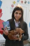 SOKAK HAYVANI - Vatandaşlardan Sokak Hayvanlarına Yardım Eli