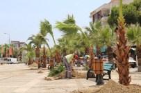 Daha Yeşil Bir Turgutlu İçin Palmiyeler Dikiliyor
