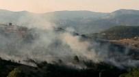 ORMAN MÜDÜRLÜĞÜ - Havran'da Orman Yangını